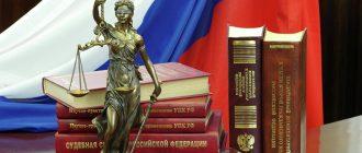 Статья 447 УПК РФ