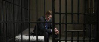 Арест как вид уголовного наказания