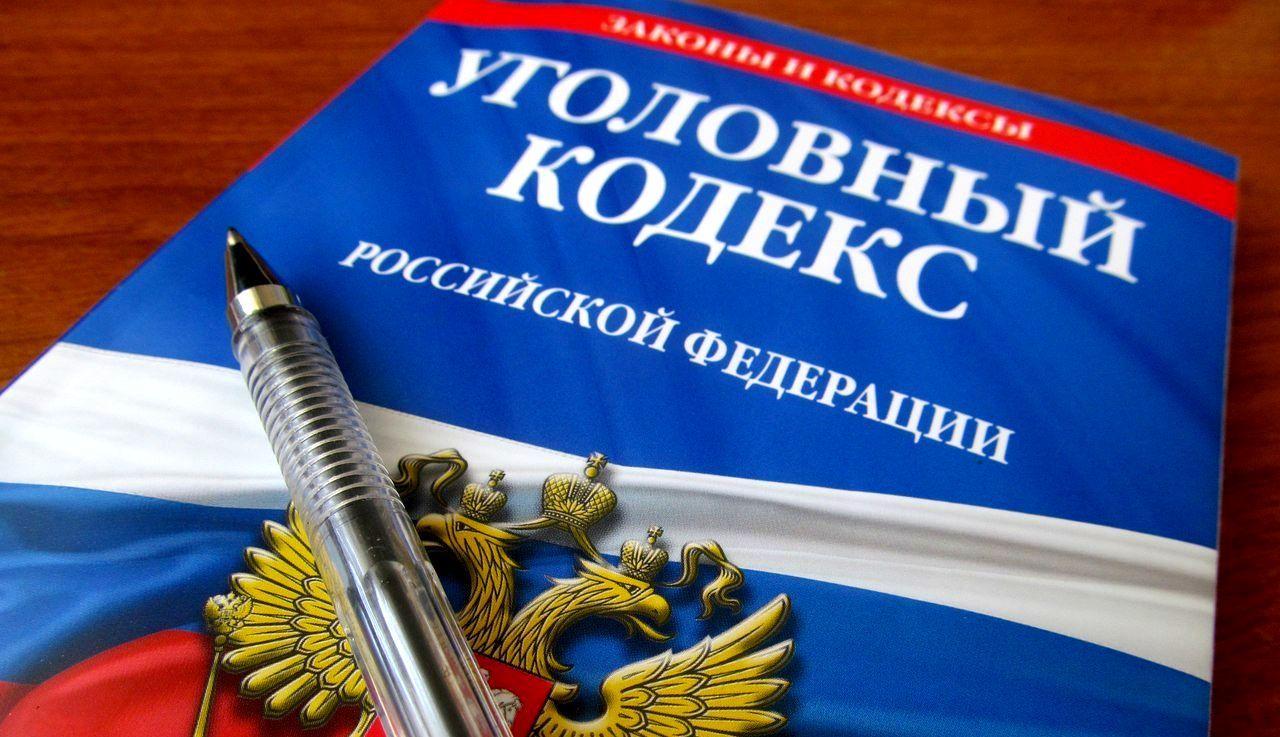 Статья 1 УК РФ